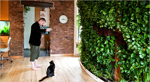 Urban agriculture vertical and indoor gardening is the new rage it is an increasingly common sight in living rooms on rooftops and balconies throughout us cities a vertical garden people are installing low cost workwithnaturefo